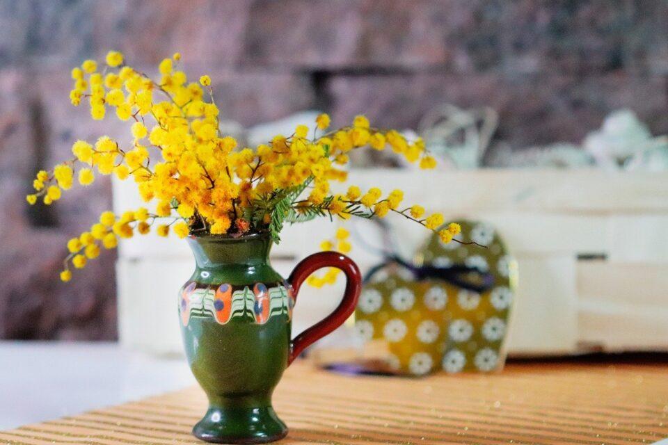 vaso con mimose per celebrare l'otto marzo. Foto da Pixabay